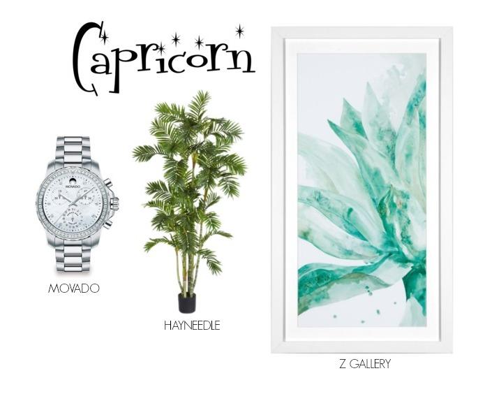 pcapricorn